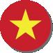 icon vietnam